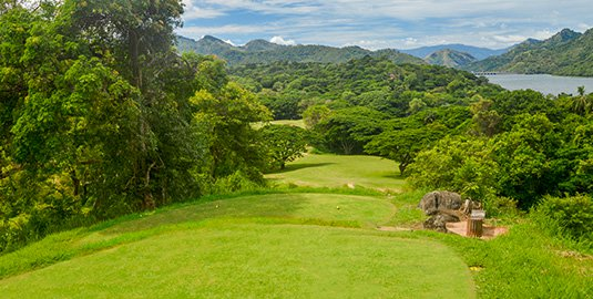 Victoria Golf Course in Digana