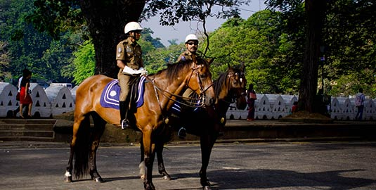 Policemen on Horses at Kandy, Sri Lanka